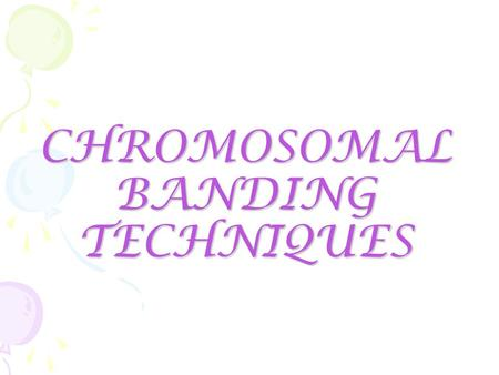 CHROMOSOMAL BANDING TECHNIQUES. What are chromosomes…?  Thread like structures found in the nucleus of a cell.  They store and carry DNA  They are.