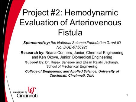 Project #2: Hemodynamic Evaluation of Arteriovenous Fistula Sponsored by: the National Science Foundation Grant ID No: DUE-0756921 Research by: Briana.