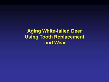 Aging White-tailed Deer Using Tooth Replacement and Wear.