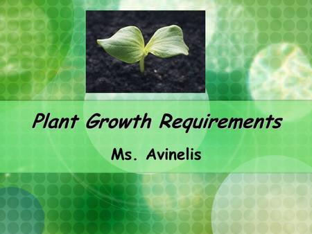Plant Growth Requirements Ms. Avinelis. Plant Requirements to Grow- Student Quick Write What are some of the things a plant needs to grow?
