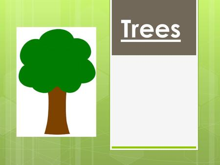 Trees. Woodlands and Rainforests Trees are found in many places including woodlands and rainforests.