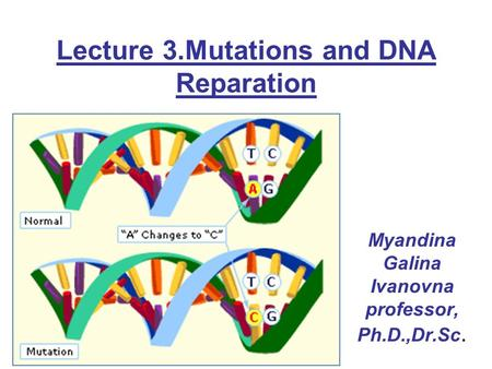 Lecture 3.Mutations and DNA Reparation Myandina Galina Ivanovna professor, Ph.D.,Dr.Sc.