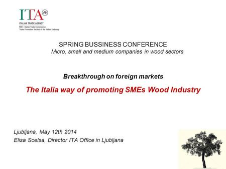 SPRING BUSSINESS CONFERENCE Micro, small and medium companies in wood sectors Breakthrough on foreign markets The Italia way of promoting SMEs Wood Industry.