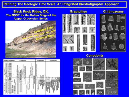 Refining The Geologic Time Scale: An Integrated Biostratigraphic Approach Black Knob Ridge, OK: The GSSP for the Katian Stage of the Upper Ordovician Series.