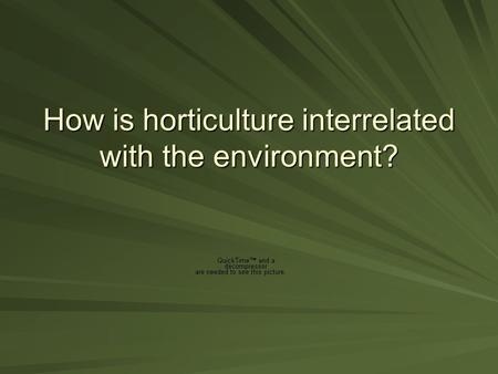 How is horticulture interrelated with the environment?