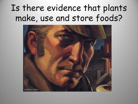 Is there evidence that plants make, use and store foods?