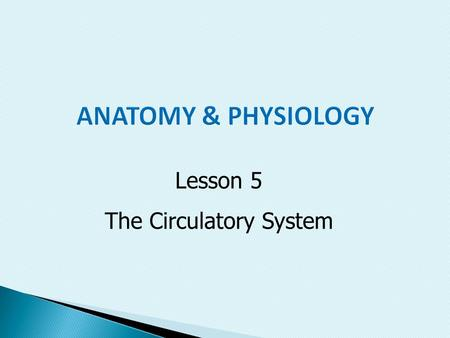 Lesson 5 The Circulatory System.  State the purpose, structures, and functions of the circulatory system  Discuss problems that occur within the circulatory.