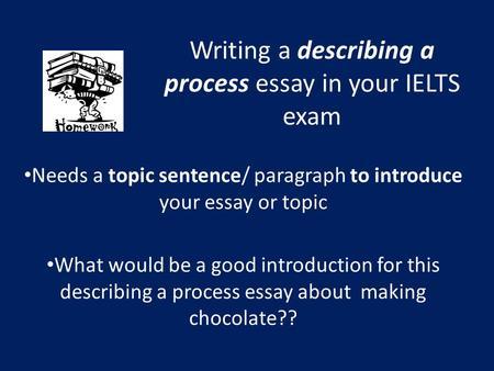 Describe your writing process essay