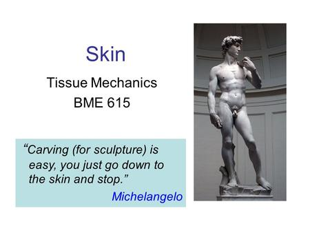 "Skin Tissue Mechanics BME 615 "" Carving (for sculpture) is easy, you just go down to the skin and stop."" Michelangelo."