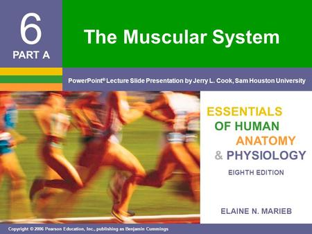 ELAINE N. MARIEB EIGHTH EDITION 6 Copyright © 2006 Pearson Education, Inc., publishing as Benjamin Cummings PowerPoint ® Lecture Slide Presentation by.