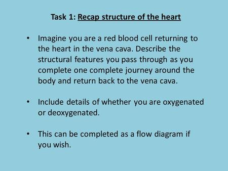 Task 1: Recap structure of the heart Imagine you are a red blood cell returning to the heart in the vena cava. Describe the structural features you pass.
