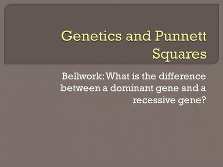 Bellwork: What is the difference between a dominant gene and a recessive gene?