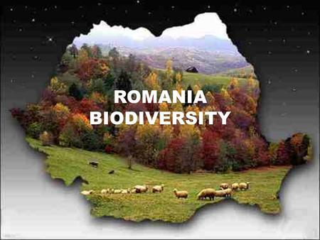 ROMANIA BIODIVERSITY. As a consequence of its geographical location and evolution of the human society in the region, Romania has a unique and high level.