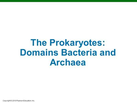Copyright © 2010 Pearson Education, Inc. The Prokaryotes: Domains Bacteria and Archaea.