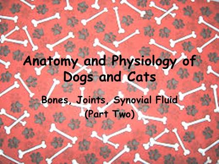 Anatomy and Physiology of Dogs and Cats Bones, Joints, Synovial Fluid (Part Two)