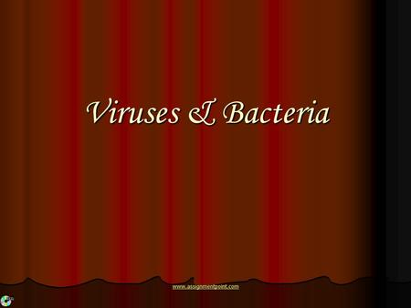 Viruses & Bacteria www.assignmentpoint.com. What are Viruses A virus is a non-cellular particle made up of genetic material and protein that can invade.