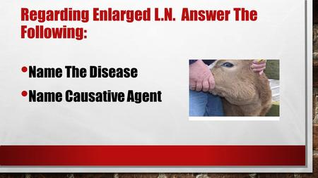 Regarding Enlarged L.N. Answer The Following: Name The Disease Name Causative Agent.