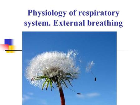Physiology of respiratory system. External breathing.