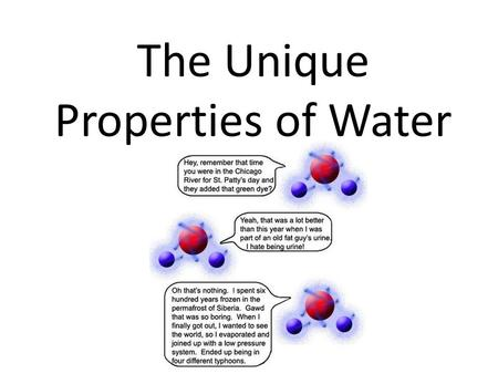 The Unique Properties of Water