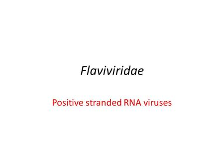 Flaviviridae Positive stranded RNA viruses. Flaviviridae Enveloped virions made up of a lipid bilayer with two or more types of envelope (E) glycoproteins.