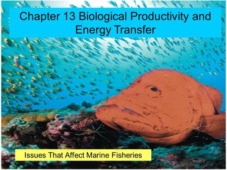 © 2014 Pearson Education, Inc. Chapter 13 Biological Productivity and Energy Transfer Issues That Affect Marine Fisheries.