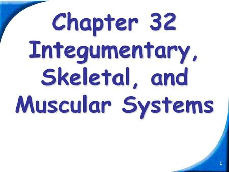 1 Chapter 32 Integumentary, Skeletal, and Muscular Systems.