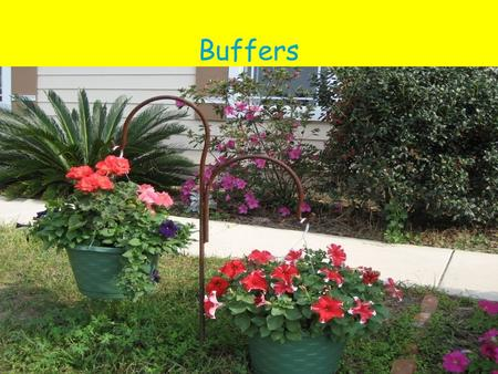 Buffers. Introduction Buffers are important in biochemical processes. Whether they occur naturally in plasma or in the cytosol of cells, buffers assure.