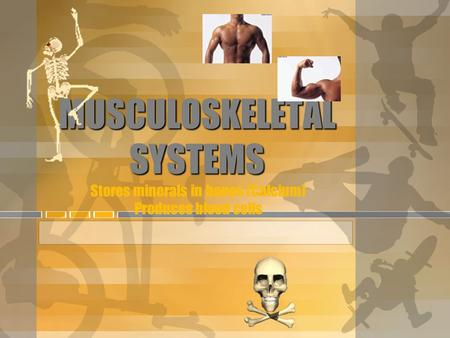 MUSCULOSKELETAL SYSTEMS MUSCULOSKELETAL SYSTEMS Stores minerals in bones (Calcium) Produces blood cells.