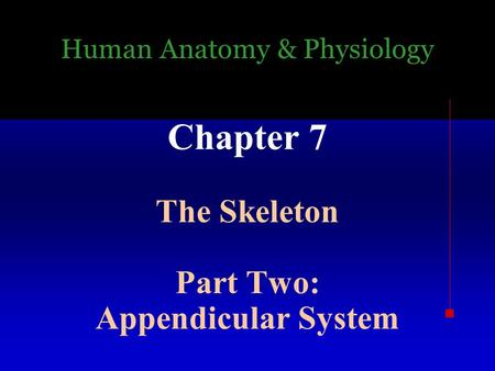 Human Anatomy & Physiology Chapter 7 The Skeleton Part Two: Appendicular System.
