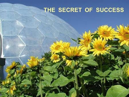 THE SECRET OF SUCCESS. Tim Smit and other creators of the Eden Project see the site as much more than a collection of plants.