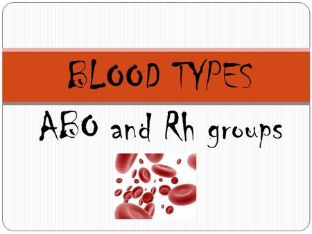 BLOOD TYPES ABO and Rh groups. Blood Type History Blood tests required before marriage (more to do with diseases than any other reason…)