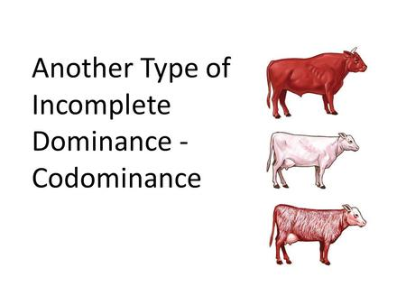 Another Type of Incomplete Dominance - Codominance.