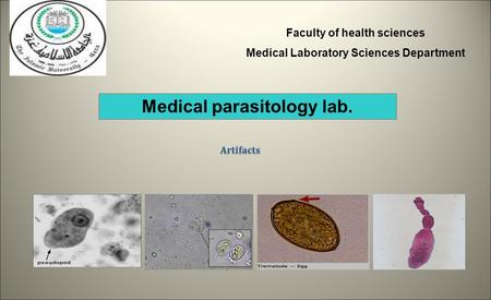 Faculty of health sciences Medical Laboratory Sciences Department Medical parasitology lab. Artifacts.