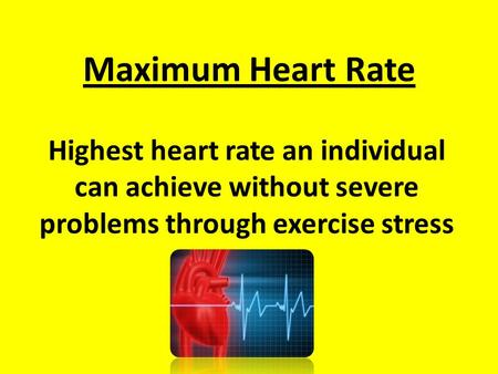 Maximum Heart Rate Highest heart rate an individual can achieve without severe problems through exercise stress.