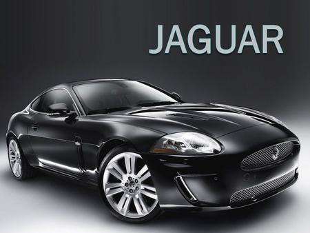 In general  Category: Premium luxury cars  Sector: Automobiles  Segment: Ultra premium luxury automobile segment 