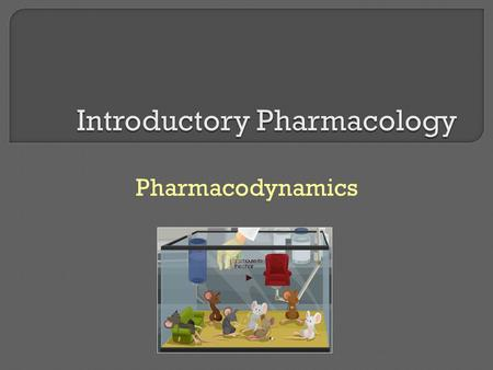 Pharmacodynamics. * The study of the biochemical and physiologic effects of drugs and the molecular mechanisms by which those effects are produced * The.