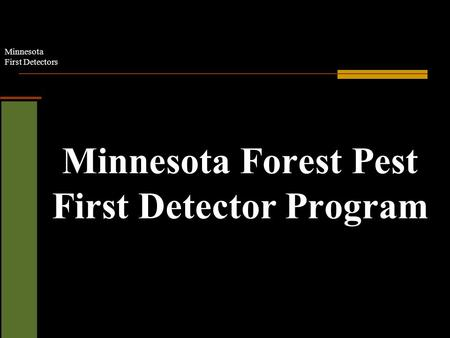 Minnesota First Detectors Minnesota Forest Pest First Detector Program.