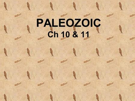 "PALEOZOIC Ch 10 & 11. AGENDA Geologic Time (7 Periods) Plate Tectonics – ""Driving Force"" –Geography/Landforms Mountains, Rock Formations –Appalachian."