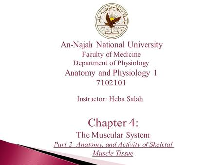 An-Najah National University Faculty of Medicine Department of Physiology Anatomy and Physiology 1 7102101 Instructor: Heba Salah Chapter 4: The Muscular.