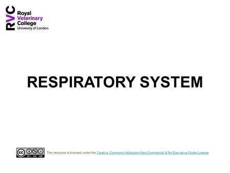 RESPIRATORY SYSTEM This resource is licensed under the Creative Commons Attribution Non-Commercial & No Derivative Works LicenseCreative Commons Attribution.