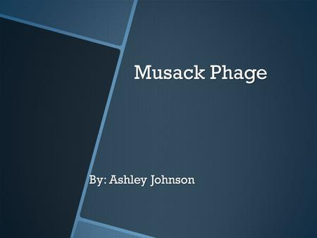 Musack Phage By: Ashley Johnson. Intro o Phage are viruses that infect bacteria o Phage are being looked at with the hope that they can be used to treat.