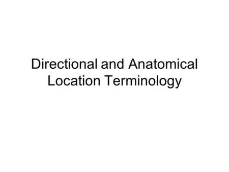 Directional and Anatomical Location Terminology