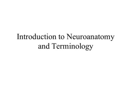 Introduction to Neuroanatomy and Terminology. Main Regions of the Nervous System Two Main Divisions –Central Nervous System –Peripheral Nervous System.