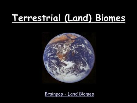 Terrestrial (Land) Biomes
