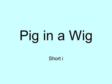 Pig in a Wig Short i. bib u1w2PiginaWig big u1w2PiginaWig.