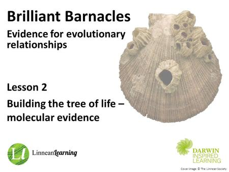 Brilliant Barnacles Evidence for evolutionary relationships Cover image © The Linnean Society Lesson 2 Building the tree of life – molecular evidence.