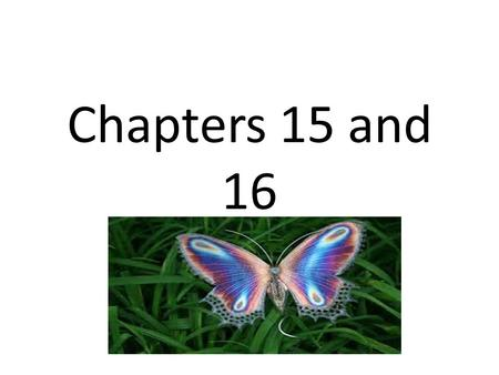 Chapters 15 and 16. Change over time is known as…