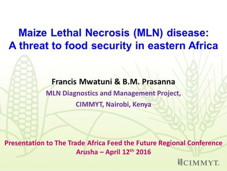 Maize Lethal Necrosis (MLN) disease: A threat to food security in eastern Africa Francis Mwatuni & B.M. Prasanna MLN Diagnostics and Management Project,