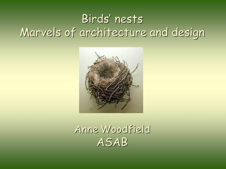 Birds' nests Marvels of architecture and design Anne Woodfield ASAB.