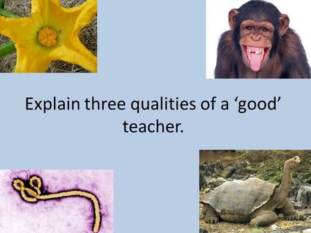 Explain three qualities of a 'good' teacher.. The Name Game Get up from your seat and find someone else in the room. Tell them your name and give them.